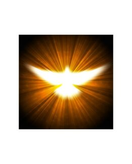 Golden Dove Reiki Attunement