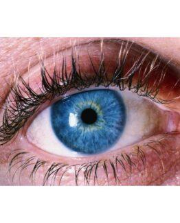 Light of Mind Third Eye Star Empowerment Attunement